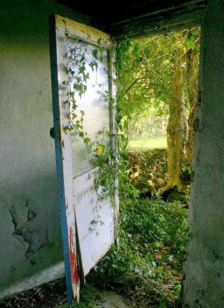 A Door to the Past, Fahan, Ireland