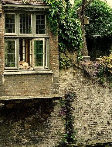 River Watcher, Bruges, Belgium