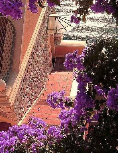 Bouganvilla Stairs, Nice, France