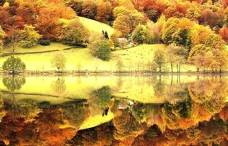 Reflections, Grasmere, England