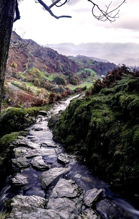 Rocky Stream, Lake District, England