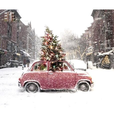 Christmas Car, Clover, Wisconsin