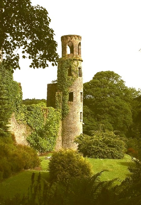 The ruined towers of Blarney Castle, Ireland